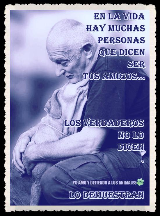 FRASES VERSOS PENSAMIENTOS CITAS (40)