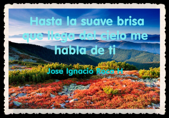 Jose Ignacio Roca H  FRASES BONITAS CITAS Y PENSAMIENTOS      (133)