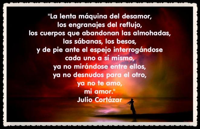 Julio Cortázar_10201254556021316_1085629950_n