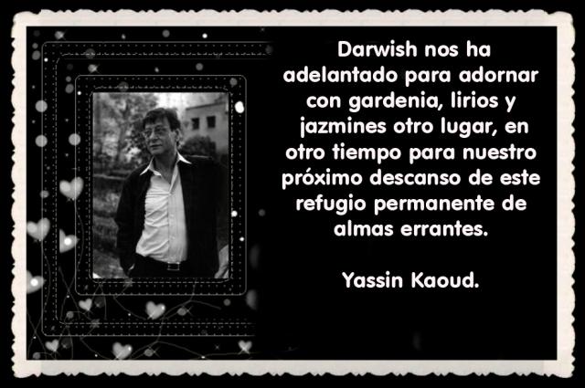 MAHMUD DARWISH  POET (11)