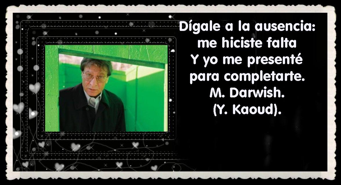 MAHMUD DARWISH  POET (15)