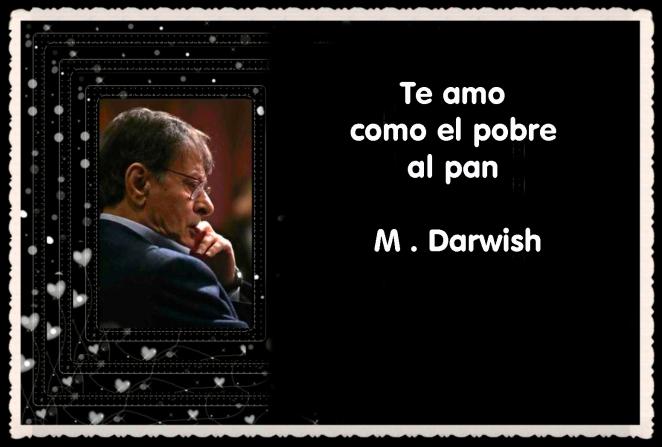 MAHMUD DARWISH  POET (17)