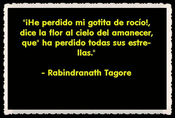 Rabindranath Tagore FRASES BONITAS CITAS Y PENSAMIENTOS      (22)