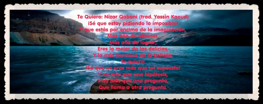 YASSIN KAOUD POEMAS Y TRADUCCIONES   (21)