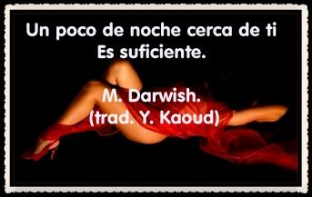 YASSIN KAOUD POEMAS Y TRADUCCIONES (8)
