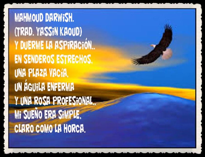 YASSIN KAOUD POEMAS Y TRADUCCIONES- JEM WONG     (13)