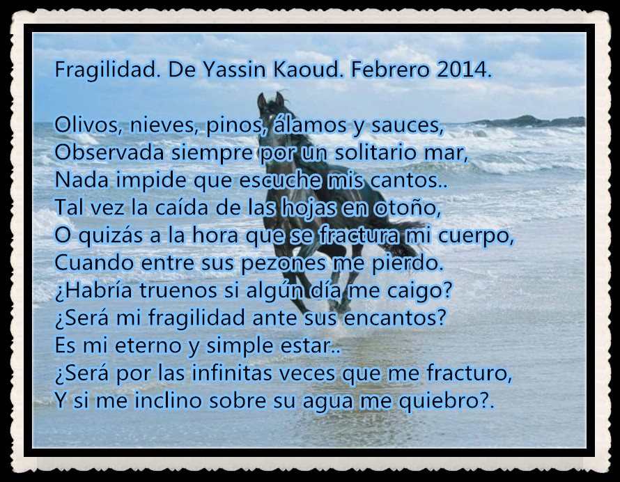 2014 POEMAS TRADUCIDOS POR YASSIN KAOUD -- (3)