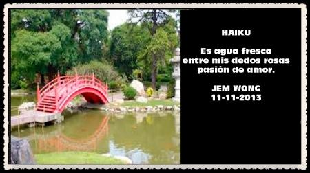 FANNY JEM WONG HAIKUS Y VERSOS CORTOS   (13)