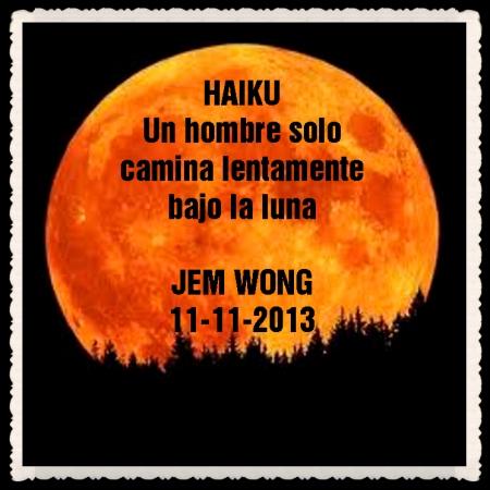 FANNY JEM WONG HAIKUS Y VERSOS CORTOS   (31)