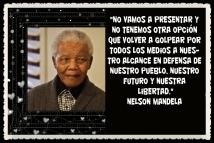 NELSON MANDELA 2013-06 DIC -12 (1)