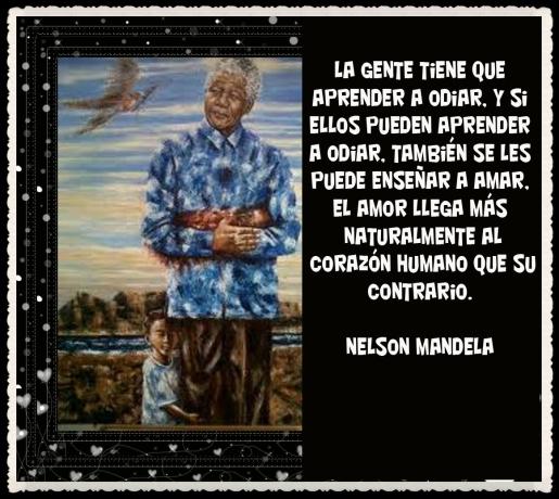 NELSON MANDELA 2013-06 DIC -12 (23)
