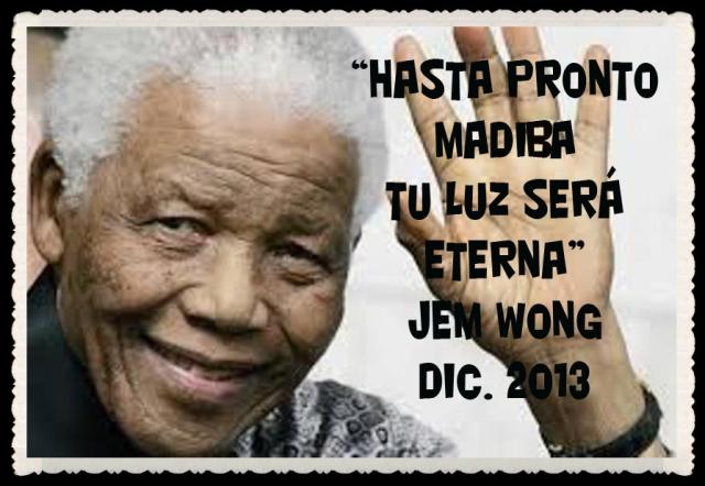 NELSON MANDELA 2013-FANNY JEM WONG