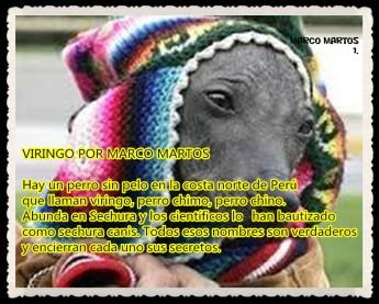 1 VIRINGO POR MARCO MARTOS