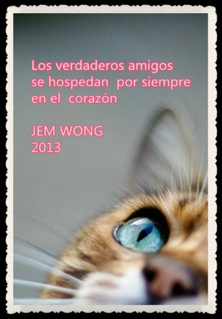 2014-FRASES   PENSAMIENTOS  VERSOS   CITAS FANNY JEM WONG (9)