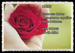 FANNY JEM WONG PENSAMIENTOS POEMAS VERSOS RETAZOS FRASES (19)