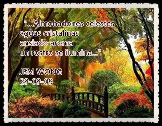 FANNY JEM WONG RETAZOS DE POEMAS (3)