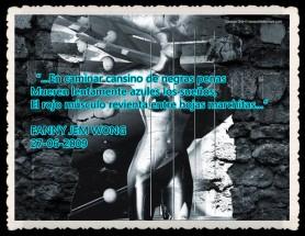 FANNY JEM WONG---RETAZOS PENSAMIENTO POEMAS (44)