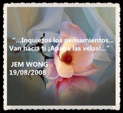 FANNY JEM WONG---RETAZOS PENSAMIENTO POEMAS (51)
