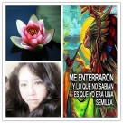 ME ENTERRARON - FANNY JEM WONG