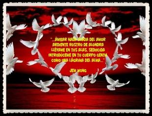 RETAZOS PENSAMIENTOS FRASES FANNY JEM WONG (48)