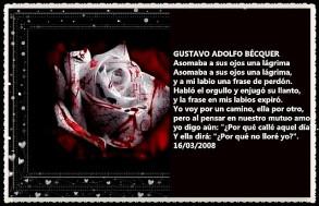 RETAZOS PENSAMIENTOS FRASES FANNY JEM WONG (84)