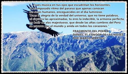 DANIEL EL CONDOR DE LAS NIEVES FRAGMENTO POR MARCO MARTOS