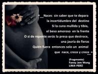 FANNY JEM WONG -FRAGMENTOS DE POESÍA- POETA PERUANA (82)
