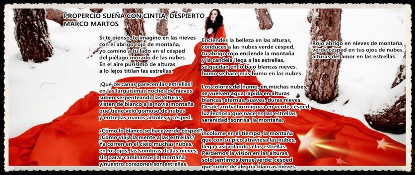 POEMAS DEL DR MARCO MARTOS (5)