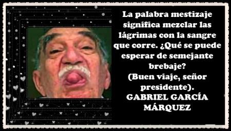 GABRIEL GARCÍA MARQUEZ  (87)