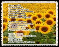 Flores amarillas POR MARCO MARTOS