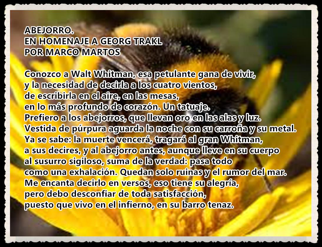 POEMA : ABEJORRO.EN HOMENAJE A GEORG TRAKL POR MARCO MARTOS