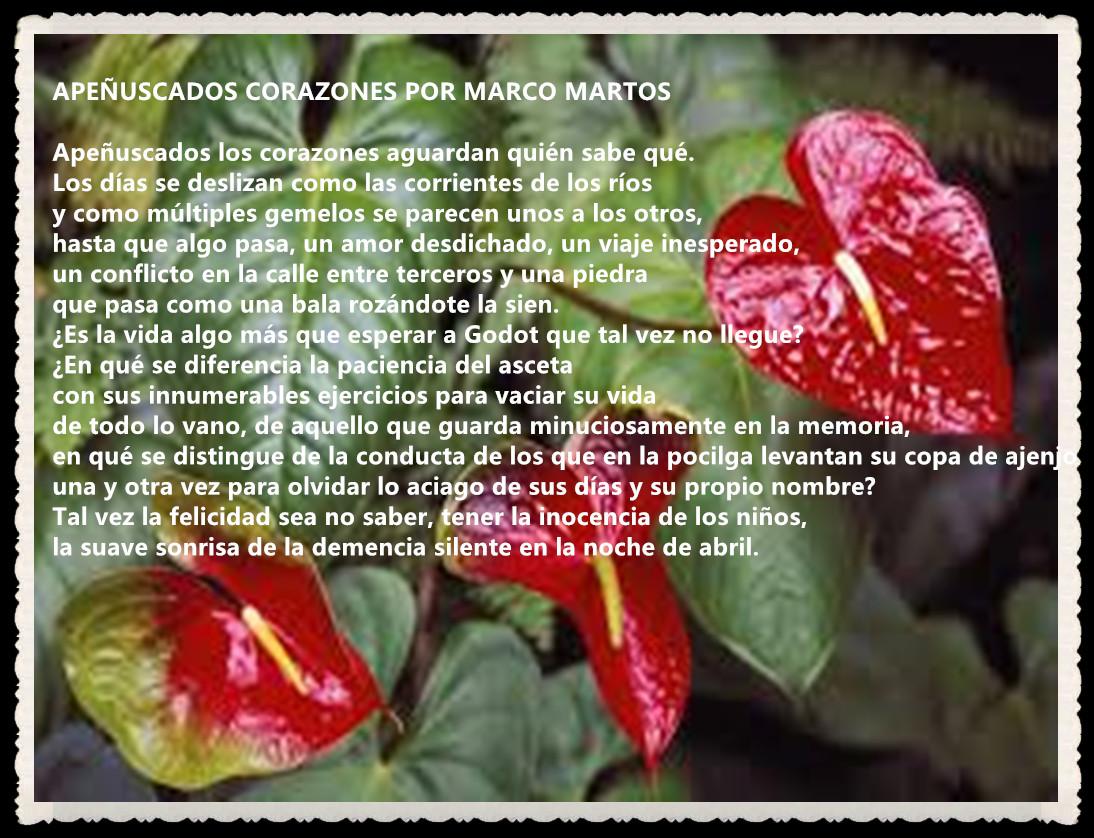 POEMA : APEÑUSCADOS CORAZONES POR MARCO MARTOS