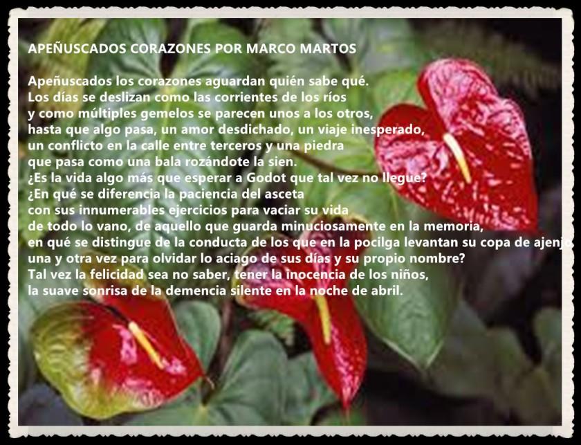 APEÑUSCADOS CORAZONES POR MARCO MARTOS