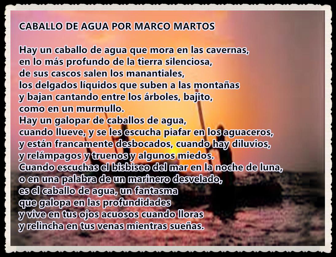 POEMA : CABALLO DE AGUA POR MARCO MARTOS