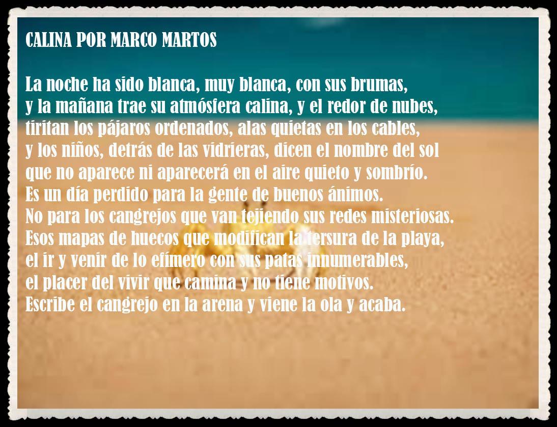 POEMA : CALINA POR MARCO MARTOS