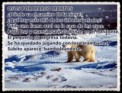 OSOS POR MARCO MARTOS