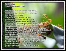 10 HORMIGAS POR MARCO MARTOS