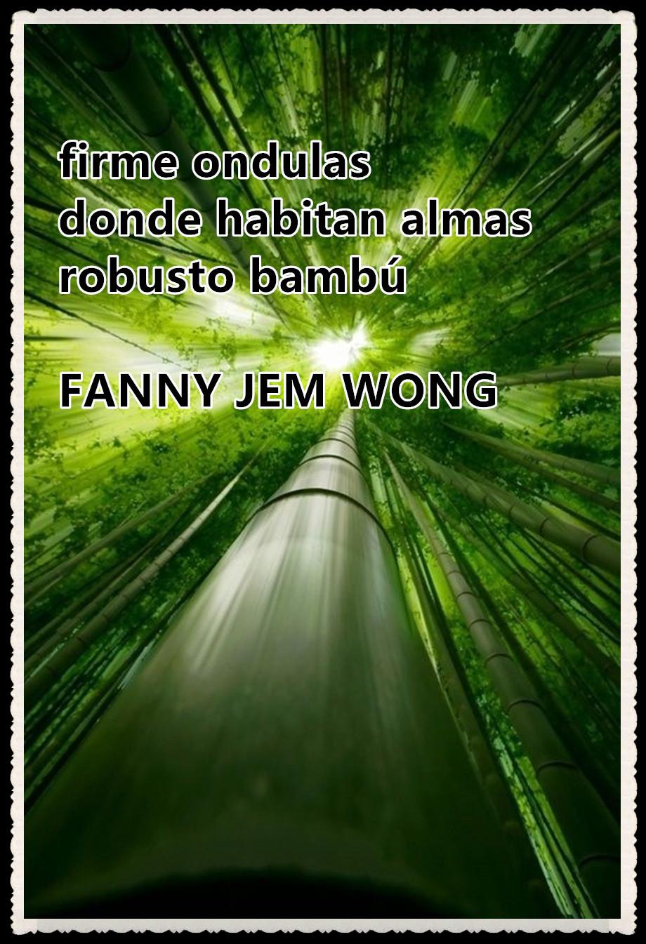 19 HAIKU-FANNY JEM WONG - FIRME ONDULAS 19-
