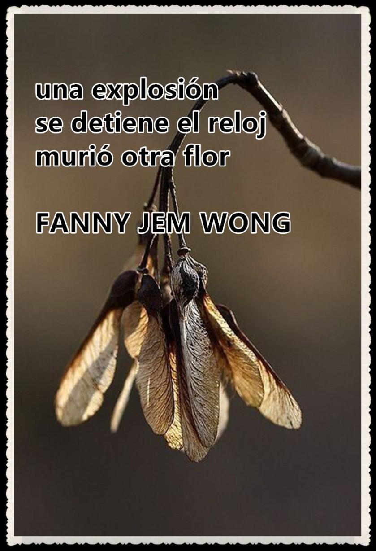 21 HAIKU-FANNY JEM WONG - MURIO OTRA FLOR