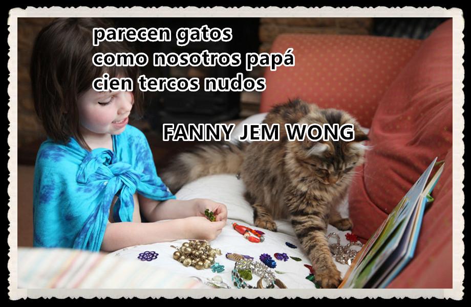 24 HAIKU-FANNY JEM WONG - parecen gatos