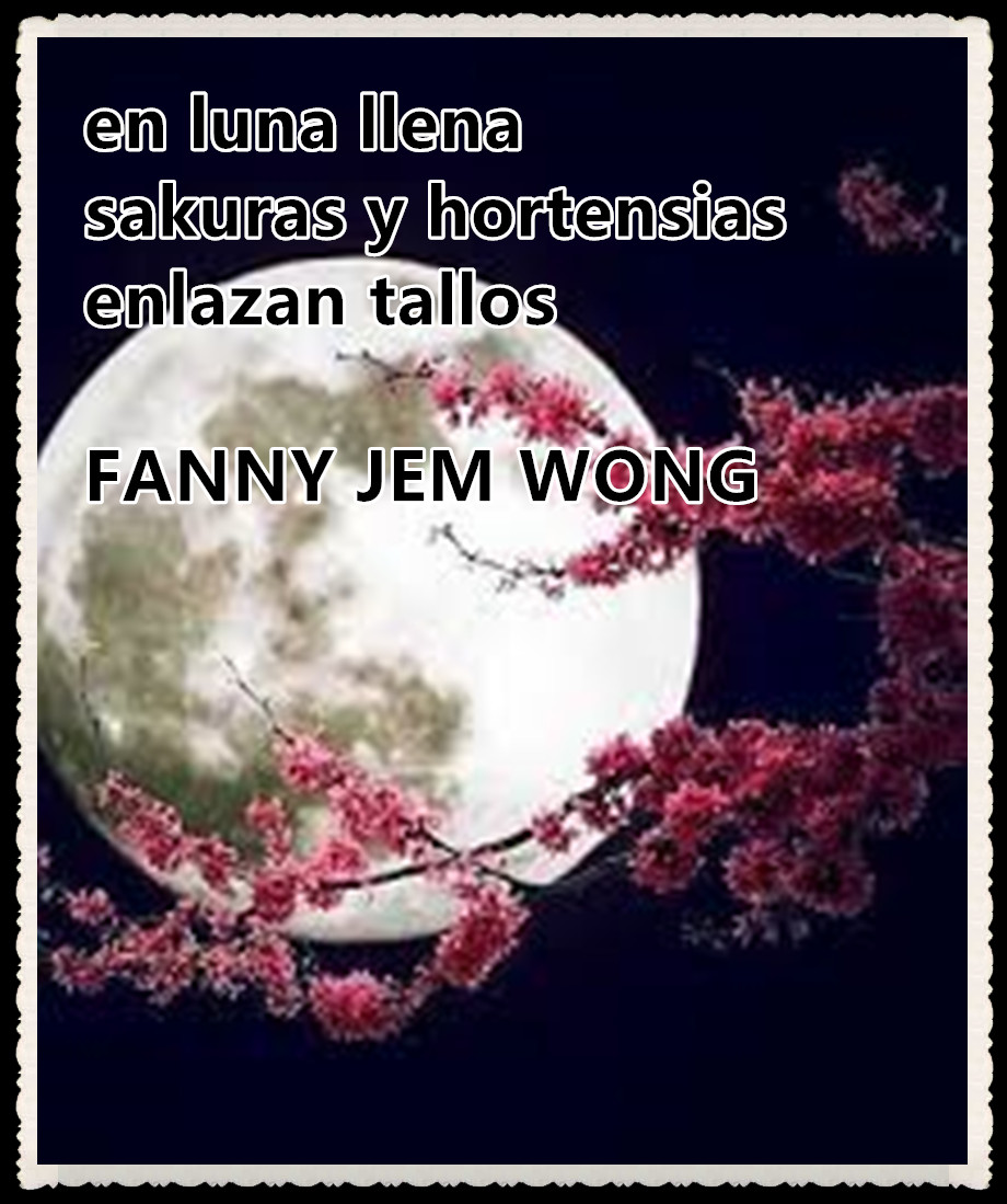 5 HAIKU en luna llena-FANNY JEM WONG-